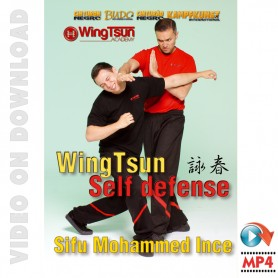 DVD Wing Tsun Defensa Personal