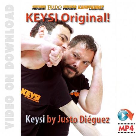 Keysi Method Original
