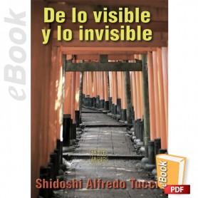 e-Book De lo visible y lo invisible. Español