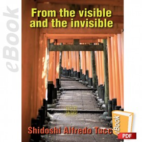 e-Book From the visible and the invisible. English