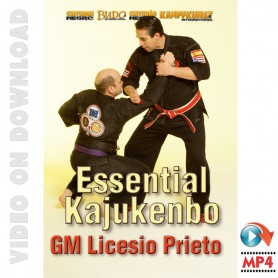 Kajukenbo Essential
