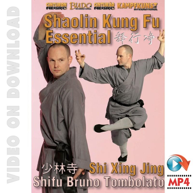 Shaolin Kung Fu Essential