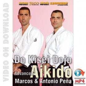Aikido Avanzado, Kisei Dojo