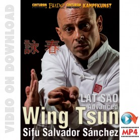 Wing Tsun Lat Sao Advanced. TAOWS Academy