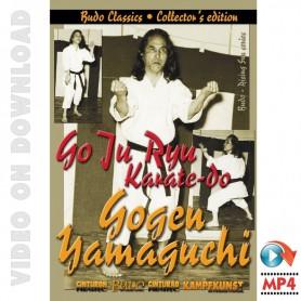 Goju Ryu Karate Yamaguchi