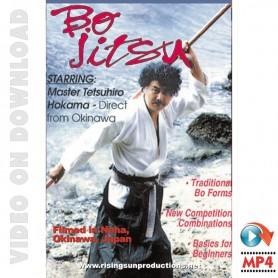 Tetsuhiro Hokama Bo Jitsu