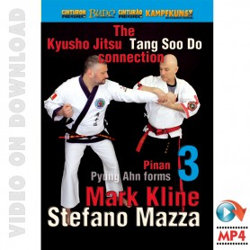 Kyusho Tang Soo Do Connection 3. Pyung Ahn Pinan Kata 3