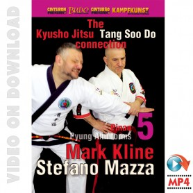 Kyusho Tang Soo Do Connection 5. Pyung Ahn Pinan Kata 5