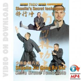 Shaolin Secret Techniques Jin Gang Ba Shi
