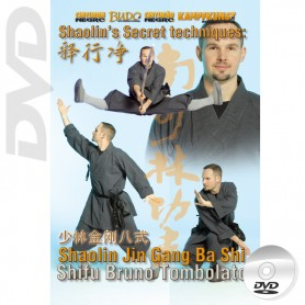 DVD Shaolin Secret Techniques Jin Gang Ba Shi