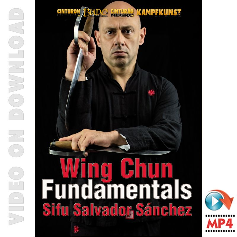 Wing Chun TAOWS Fundamentals