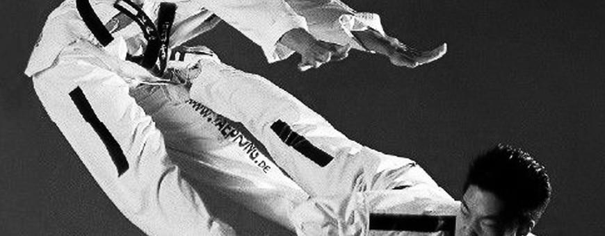 DVD di Taekwondo coreano per soli 20€. Budo International