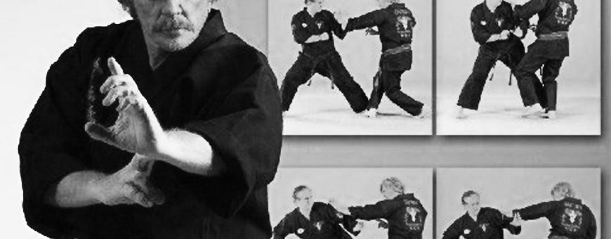 DVD di American Kenpo Karate, per soli 20€. Budo International