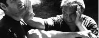 DVD di vari stili di Arti Marziali, combattimento e autodifesa