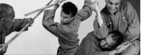 DVD о вьетнамских боевых искусствах. Вьет Во Дао, Во Ко Труйен