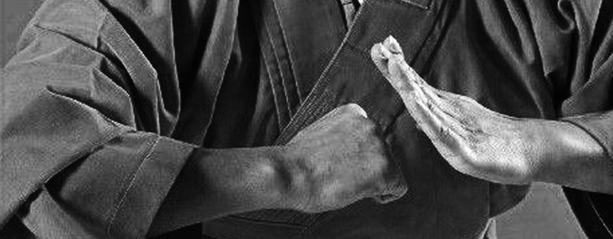 DVD di Shaolin Kung Fu. Catalogo Esclusivo Budo International