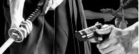 DVD-каталог тренировок по боевым искусствам с оружием Budo International