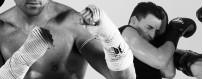 DVD-каталог контактных и боевых видов спорта. Budo International