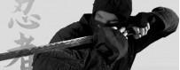 Download Ninjutsu video DVD. Exclusive ninja video training