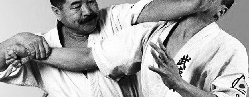Download DVD Video Catalog of various Japanese Martial Arts