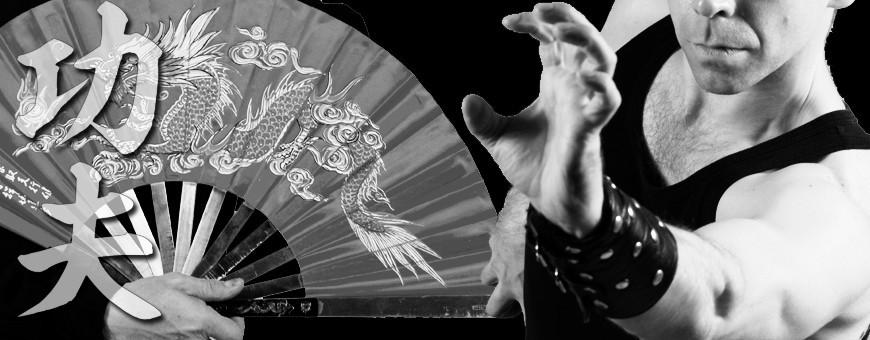 DVD-видео о китайских боевых искусствах о загрузке, техниках и формах