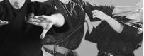 Загрузите DVD-видео о Кюсё-джитсу. Точки давления
