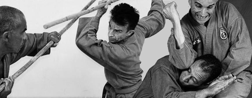 Скачать DVD о вьетнамских боевых искусствах. Вьет Во Дао, Воко Труйен