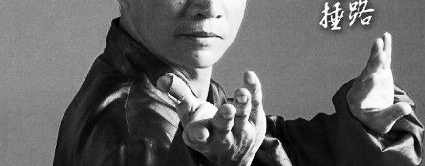 Download DVD video di Tai Chi, Qi Gong. Tecniche, allenamento