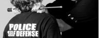 DVD видео про профессиональную, полицейскую и военную самооборону Скачать