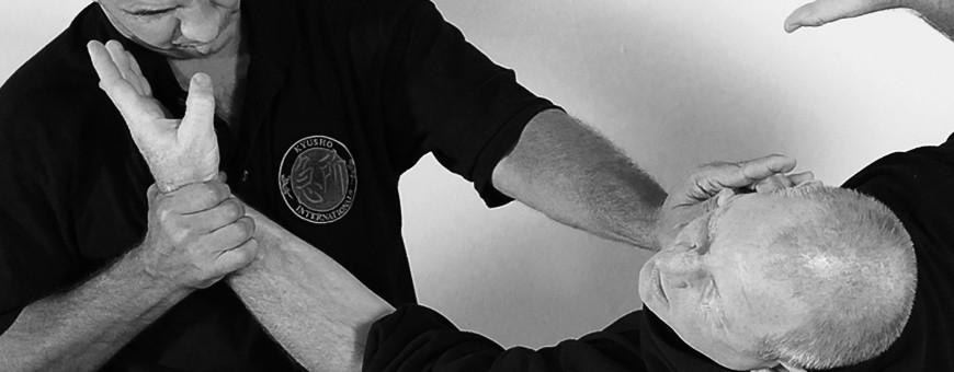Скачать основной каталог DVD Video Self Defense Systems VOD