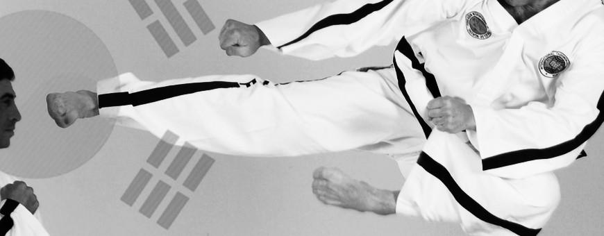 Загрузите DVD с обучающими видеороликами о корейских боевых искусствах, всего за 11,90 €