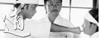 Загрузите DVD-видео о японских боевых искусствах. обучение, техники